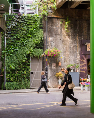 Living wall in Borough Market
